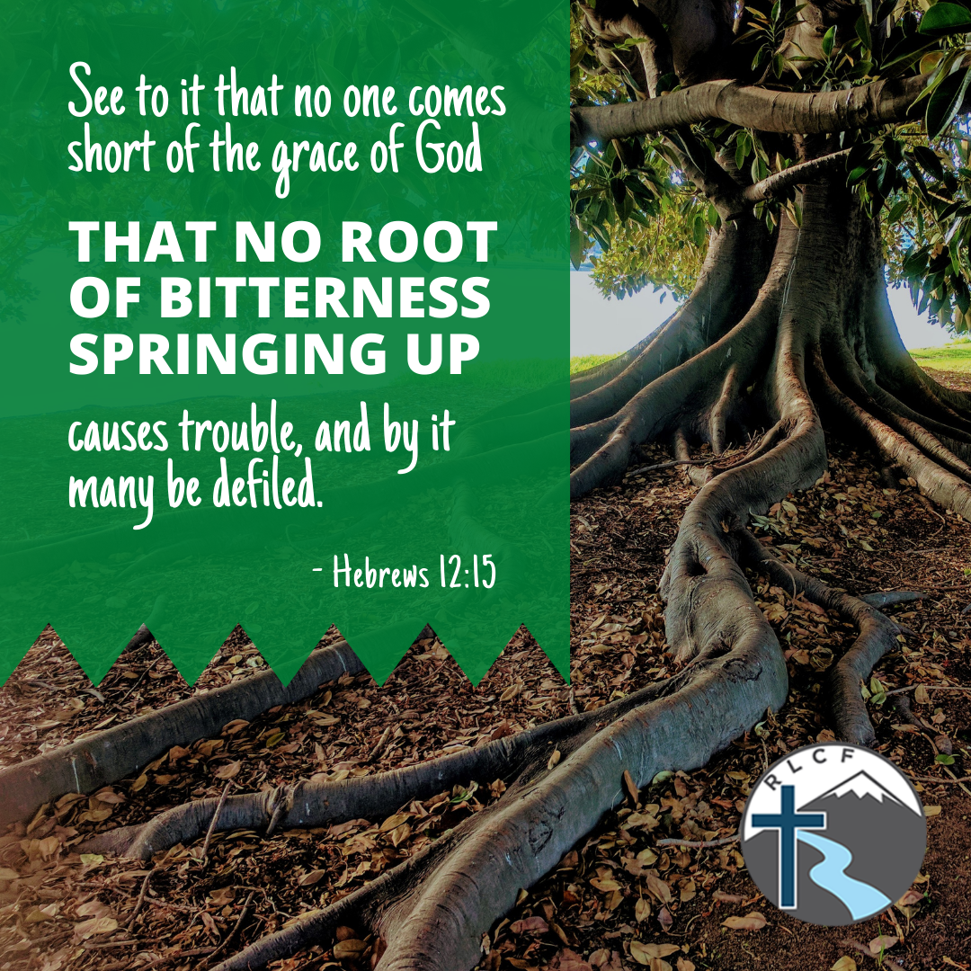 """""""See to it that no one comes short of the grace of God; that no root of bitterness springing up causes trouble, and by it many be defiled."""" —Hebrews 12:15, NASB"""